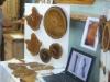 תערוכת בהפינינג עץ 2010
